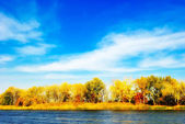 Autumn trees by the river — Stock Photo