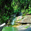 Stock Photo: Small waterfall with rocks and green trees