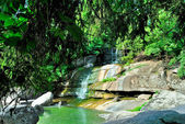 A small waterfall with rocks and green trees — 图库照片