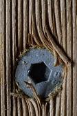 Trä skruv — Stockfoto