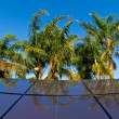Tropical solar panels — Stock Photo