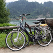 Touristic bicycles near lake on road — Foto de Stock