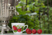 Russian samovar tea on the nature — Stock Photo