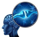 Insan sinir hücresi synapse reseptör — Stok fotoğraf