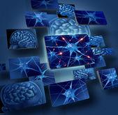 Beyin sinir hücreleri kavramları — Stok fotoğraf