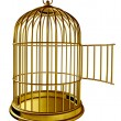 Stock Photo: Open Bird Cage
