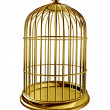 Bird Cage — Stock Photo #11274620