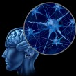 Brain Neuron Chart - Stock Photo