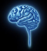 Human Brain Concept — Stock Photo