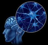 Brain Neuron Chart — Stock Photo