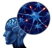 Insan aktif nöron — Stok fotoğraf