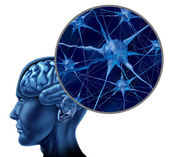 Human brain medical symbol — Stock Photo