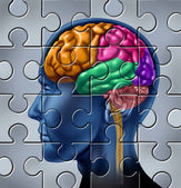 Intelligence Research Puzzle — Stock Photo