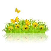 Green meadow — Stock Vector