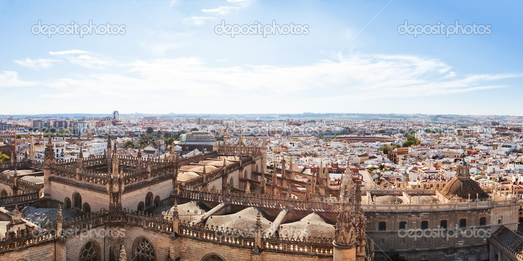 View from the Cathedral of Seville. Spain. — Stock Photo #10739078