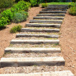 Stock Photo: Wooden stairs in garden. Summer.