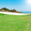 Golf course on the background of the sea. Summer. — Stock Photo