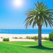 Stock Photo: Summer day on golf course and ocein Portugal.
