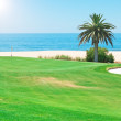 Beautiful summer day on the golf course near the sea. — Stock Photo