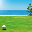 Stock Photo: Golf ball on green grass with the ocean. Portugal.