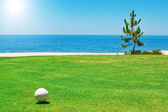 Golf ball op groen gras met de oceaan. portugal. — Stockfoto