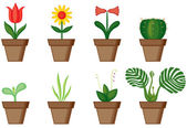Window plants — Stock Vector