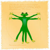 Vitruvian frog — Stock Vector