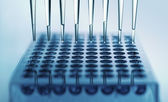 Multichannel pipette — Stock Photo