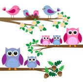 Búhos y pájaros — Vector de stock