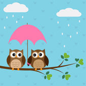Owls couple under umbrella — Stock Vector
