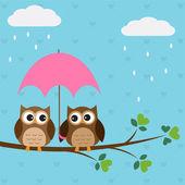 Baykuşlar çift şemsiyesi altında — Stok Vektör