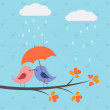 Birds under umbrella — Stock Vector