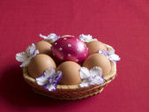 Basket with easter eggs and flowers composition — Stock Photo