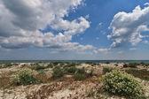 Divoká pláž — Stock fotografie