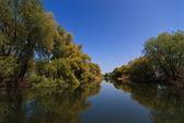 River channel in the Danube Delta — Stock Photo