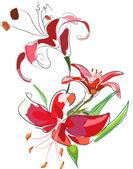 Lilies3 — Stock Vector