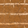 Old clay wall, seamless pattern — Stok fotoğraf