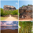 Royalty-Free Stock Photo: Sri-lanka environment set