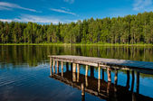 Wooden pier with forest scene — Stock Photo
