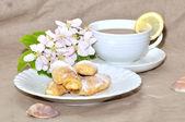 Handmade cookies with tea cup — Stock Photo