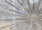 Dandelion fountain — Stock Photo