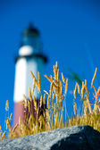 Montauk Lighthouse — Stock Photo