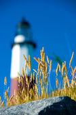 Montauk latarnia morska — Zdjęcie stockowe