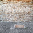 Brick wall outdoors setting — 图库照片