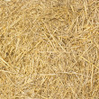 Background of yellow hay — Stock Photo