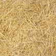 Stock Photo: Background of yellow hay