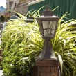 Stock Photo: Street lights and plants