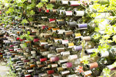 Fence from of the empty bottles from a wine — Stock Photo