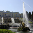 Stock Photo: Fountains at Peterhof, Russia