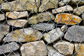 Rock Wall Detail — Stock Photo